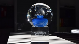 Nominacja do Kryształowej Brukselki 2020